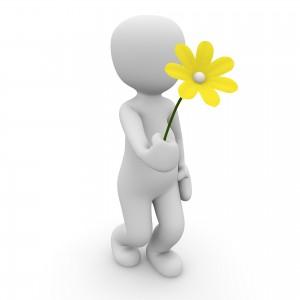 flower-1013710_1920